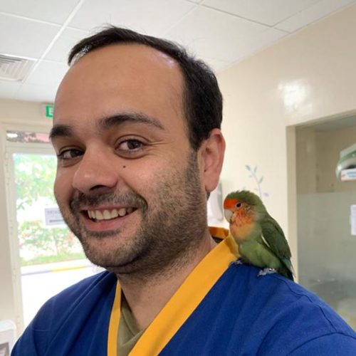 Dr. Jose Limpo
